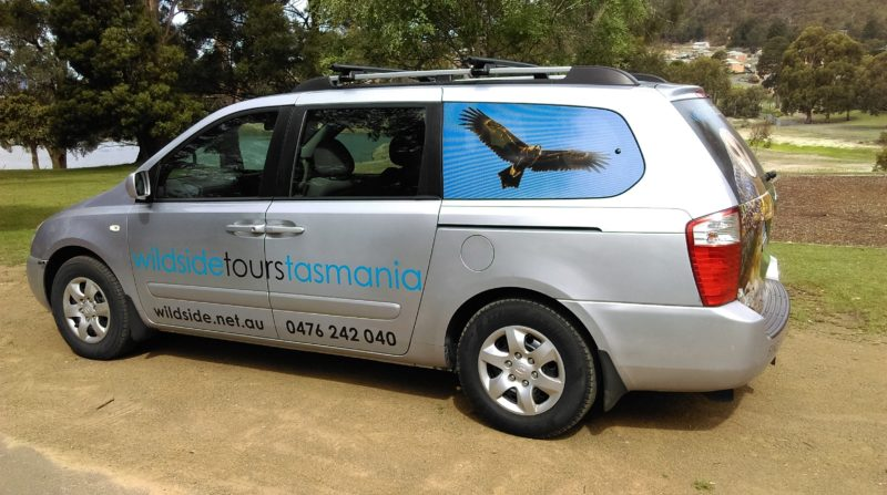 Thousand Lakes Lodge – Guest Transfers (Southern Tasmania