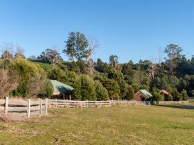 Five tin dragon cottages sitting above the Ringarooma River