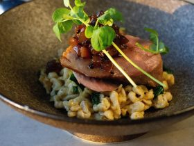 Close up image of main dinner meal of duck breast with spinach a spatzle.