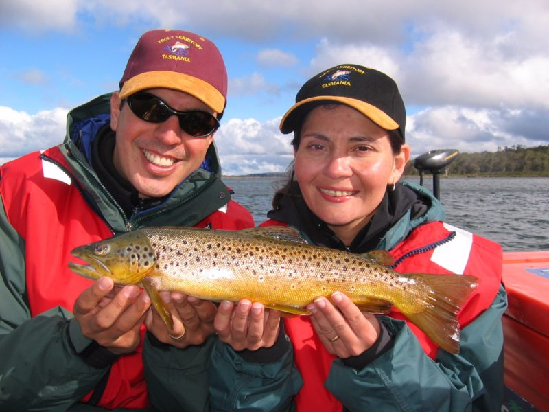 Fly fishing for wild Tasmanian brown trout.
