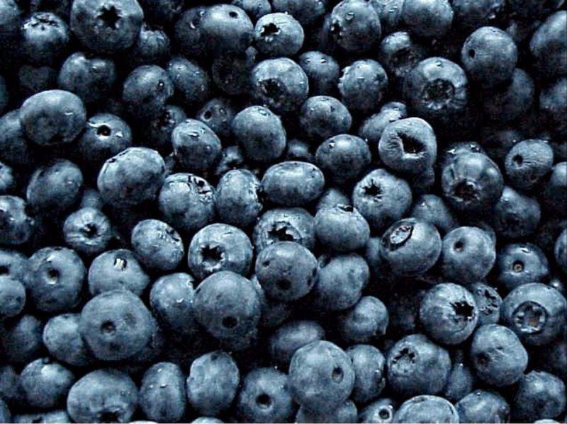 Tru-Blu Berries and Tassie Blue Berries