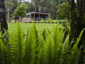 Stunning location near Russell Falls and Mt Field National Park