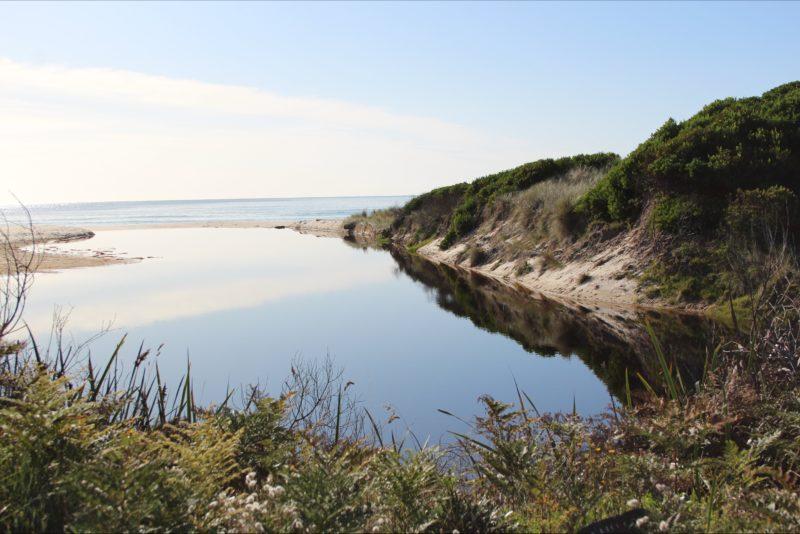 Stunning scenery at Beaumaris, Tasmania on the way to Scamanda