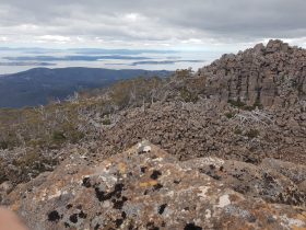 Hobart, Tasmania, Walk, Guide, Nature, Kunanyi, Mt Wellington