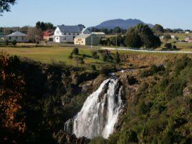 Waratah Falls