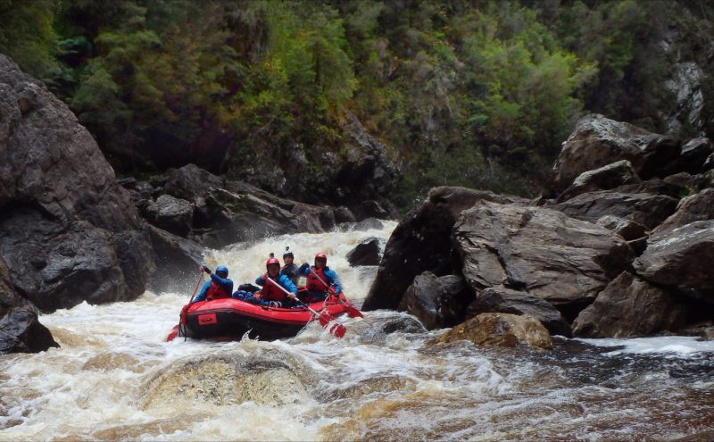 Whitewater rafting action in the Great Ravine on the Franklin River