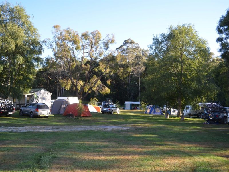 Campground full of campers
