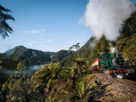 The West Coast Wilderness Railway is a steam railway like no other