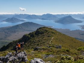 Wild Pedder, Mount Eliza, Lake Pedder and the Frankland Range