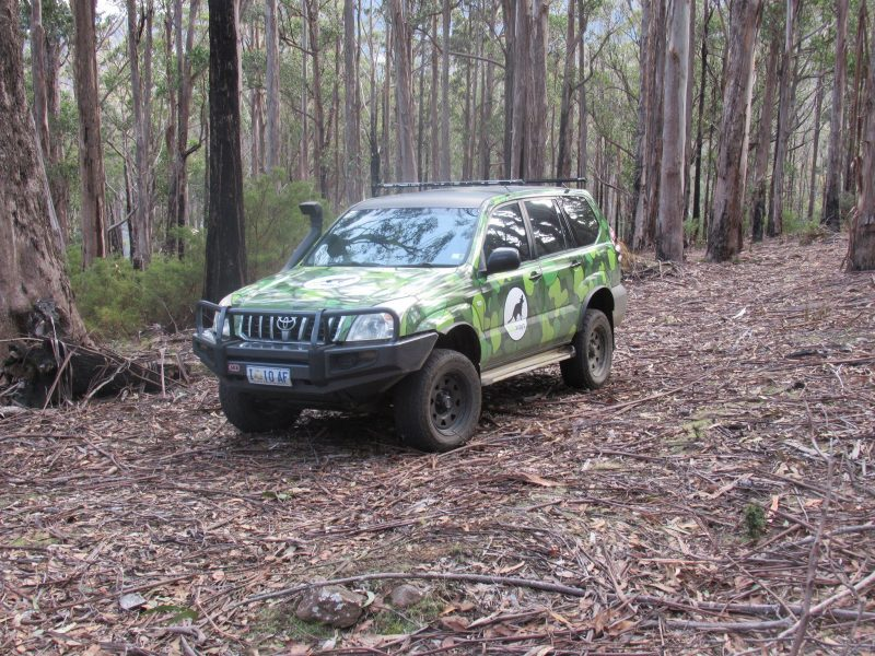 The Wildways tour vehicle, taking you into the wilderness to see Tasmania's unique Wildlife