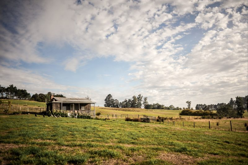 Wines for Joanie Cottage perfect tasmanian escape weekend