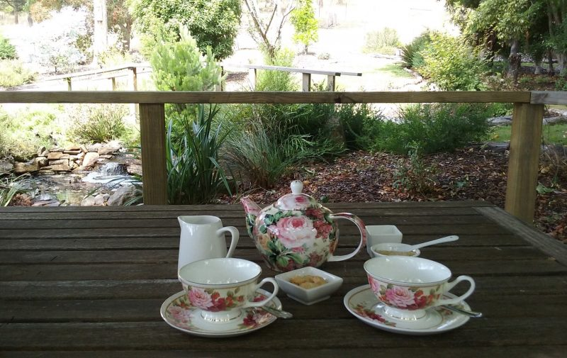 Floral teapot and cups ready to be served on the deck in front of our small ornamental pond