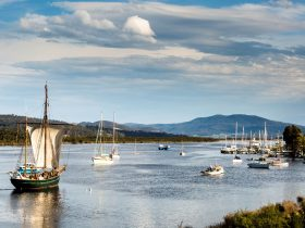 Yukon on the Huon River