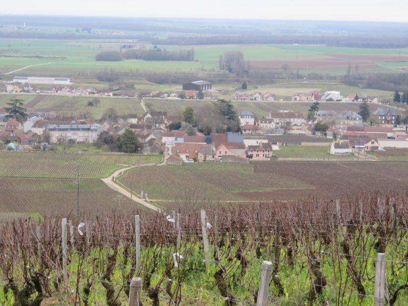 Aloxe-Corton in Burgundy