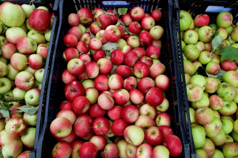 Hazeldean Forest Farm Apples