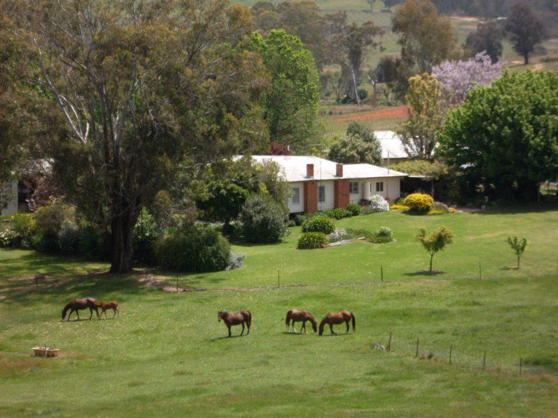 Acacia Park Farm House