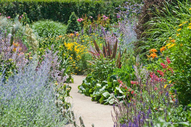 Alowyn Gardens and Nursery