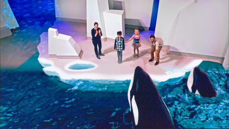 Antarctic Journey at the Nobbies - Augmented Reality experience