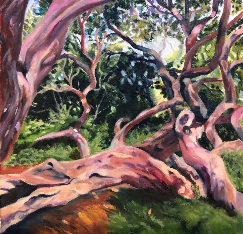 'Treefall' - Julie Hall Oil on linen