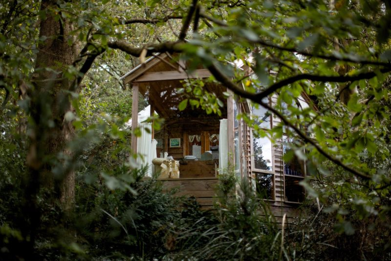 Treehouse Conservatory