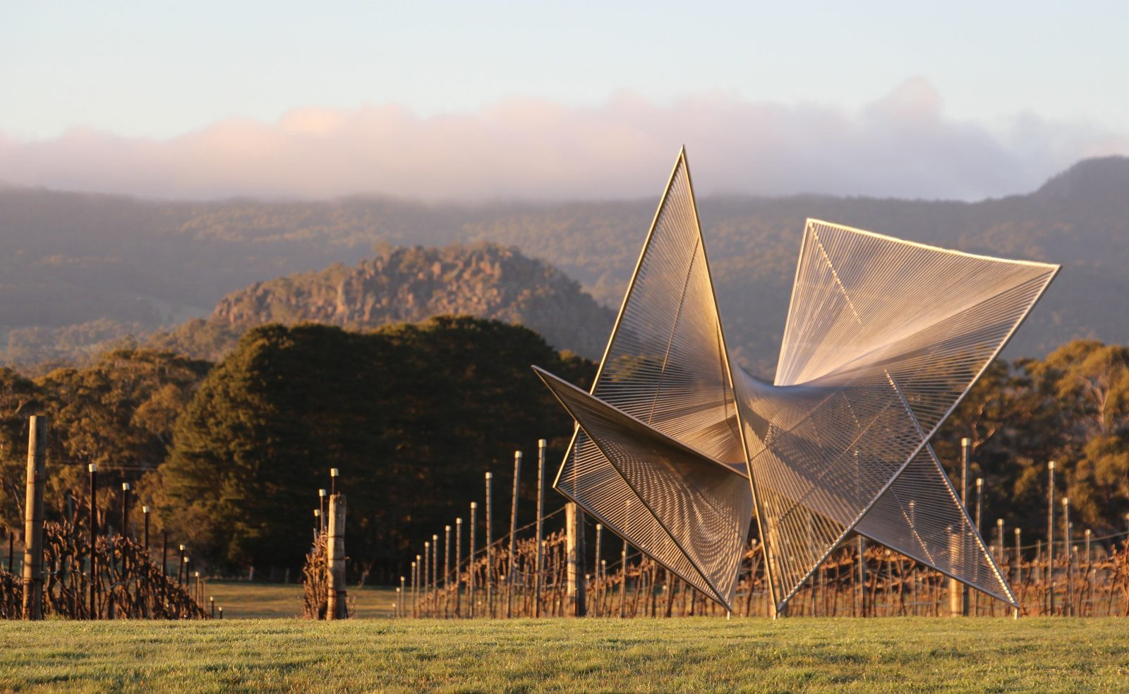 Verticies by Matt Harding - Art in the Vines at Hanging Rock Winery
