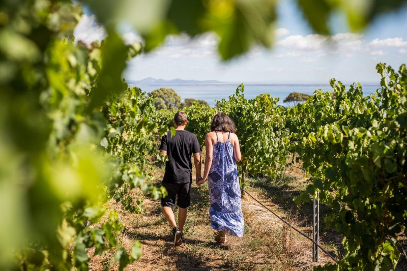 Bellarine winery - Terindah Estate