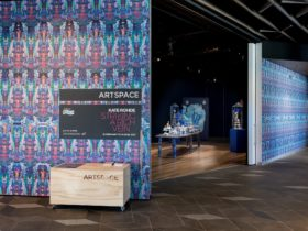 An image of Artspace through the opening of the door. Wallpapered exterior and darkly lit interior