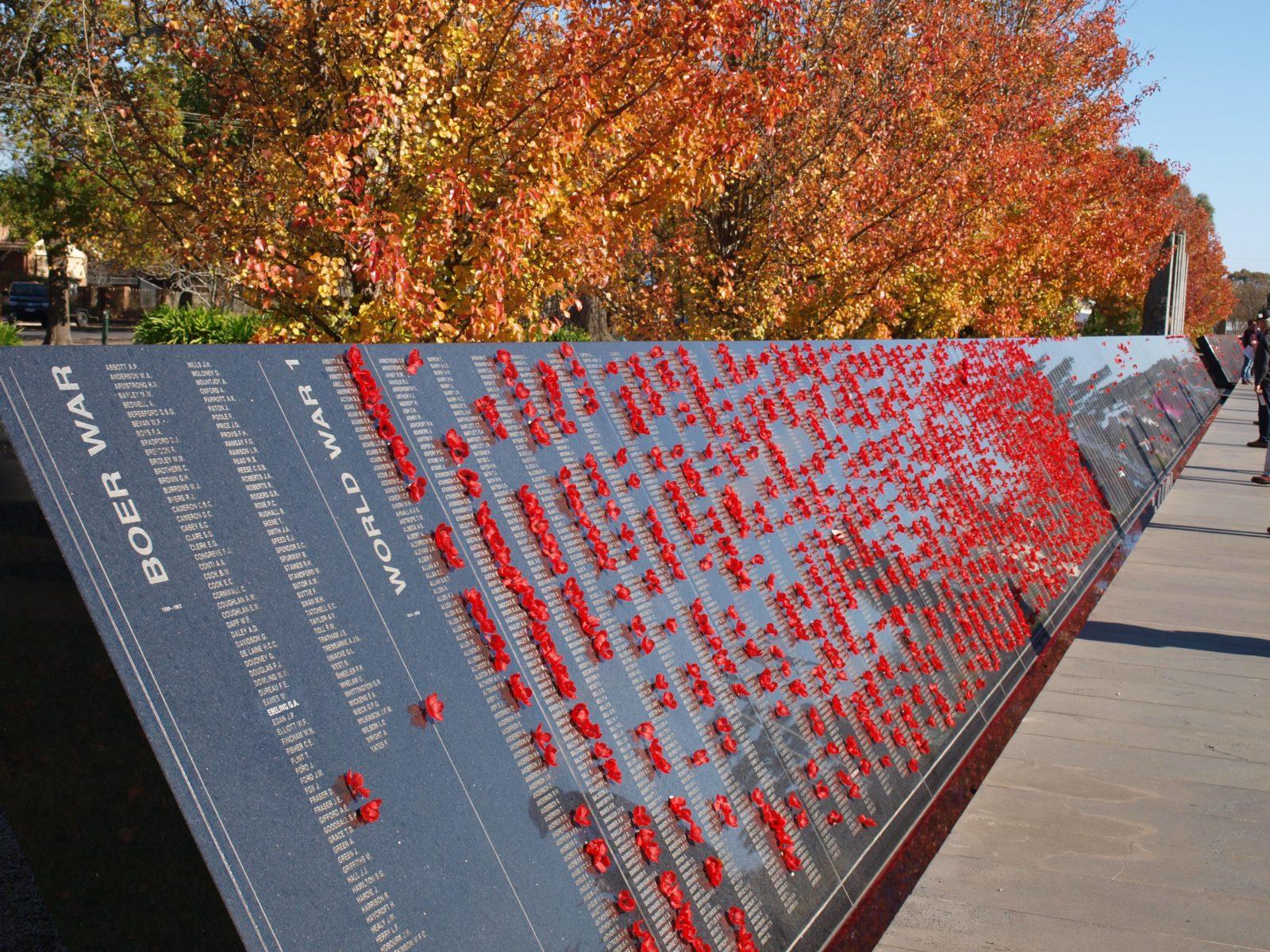 ANZAC Day Poppies World War One
