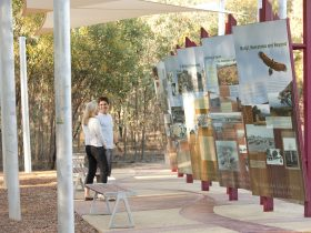 Australian Light Horse Memorial Park - Interpretive Boards