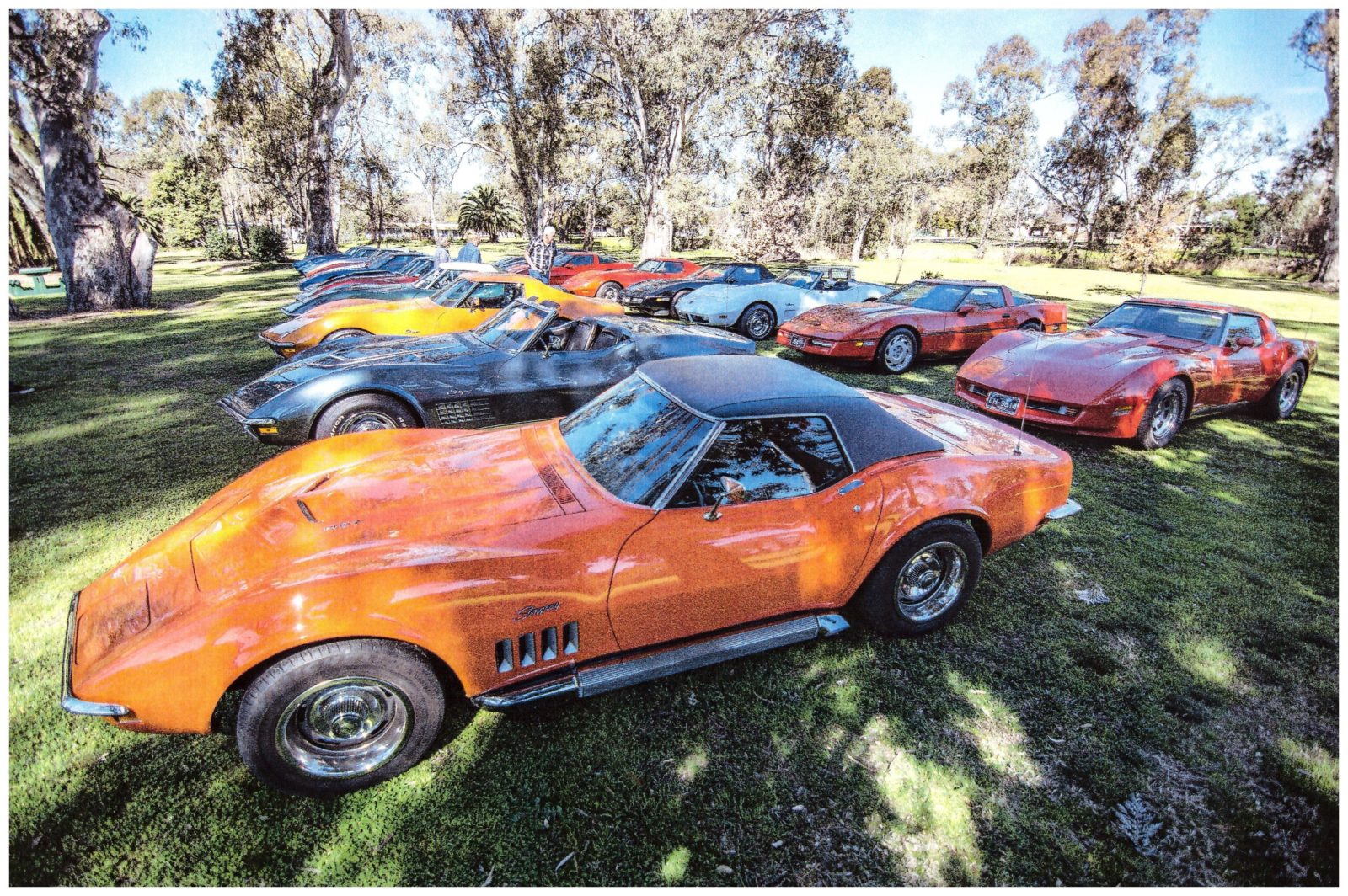 Corvettes in Seven Creeks Park