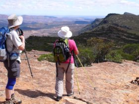 Hikes in the Flinders Ranges