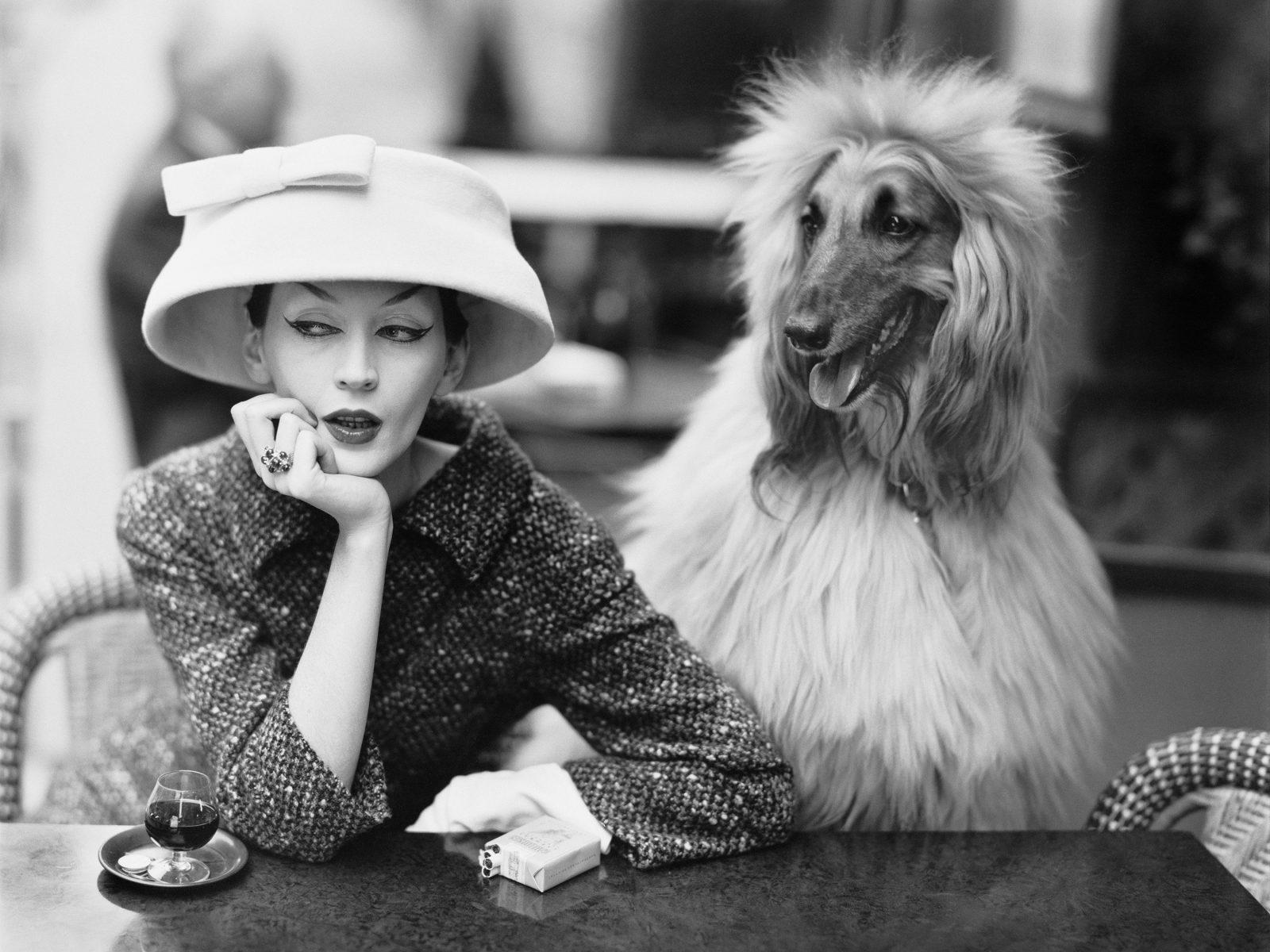 Dovima with Sacha, cloche and suit by Balenciaga, Café des Deux Magots, Paris, 1955