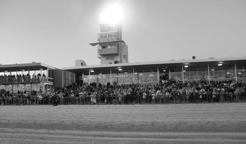 Enjoying a summer night of racing