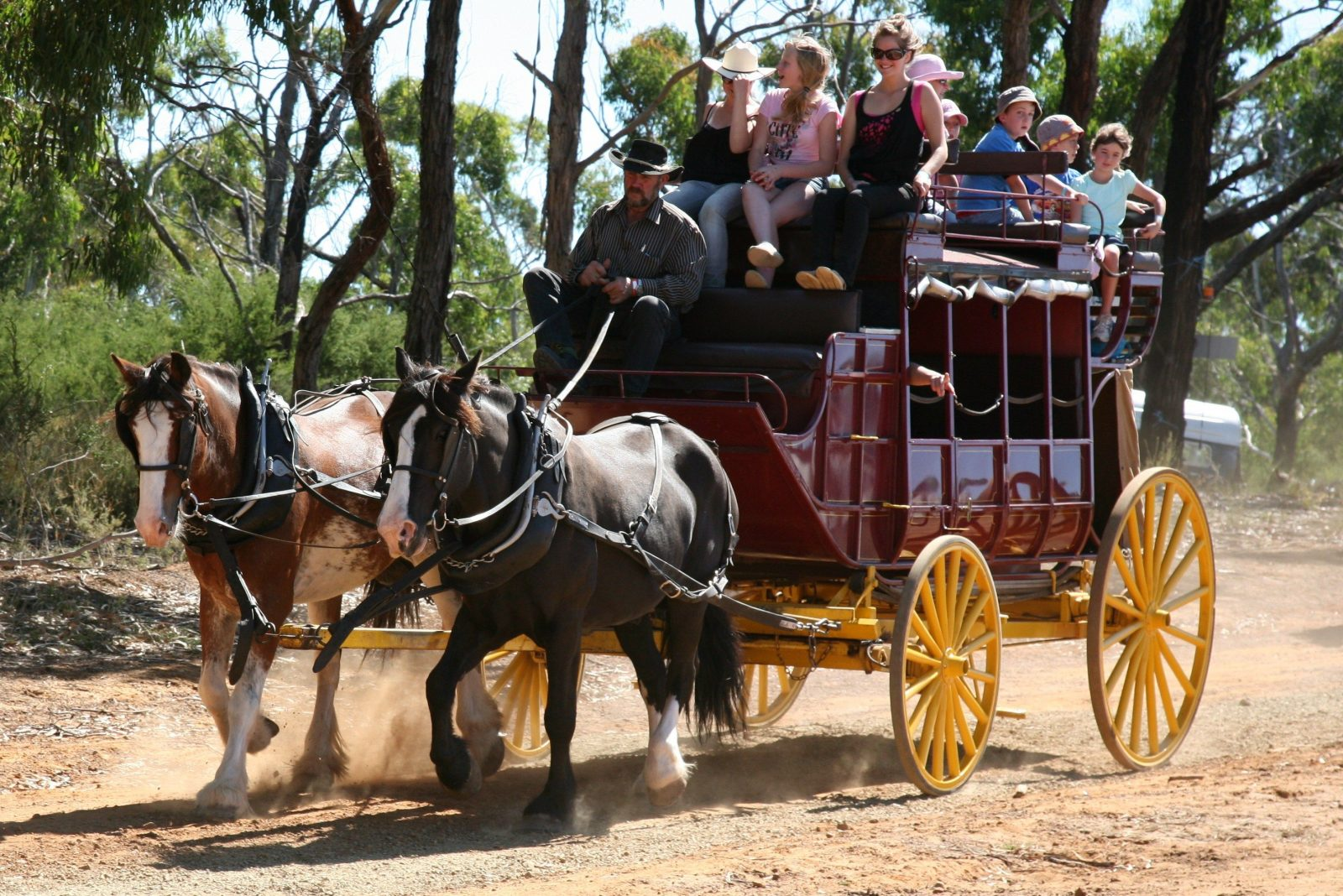 Balmoral Pastoral and Agricultural Society Show