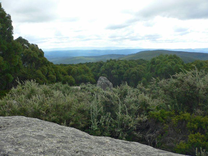 Baw Baw National Park