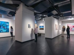 Installation view of the 2018 Bayside Acquisitive Art Prize, Bayside Gallery, Melbourne.