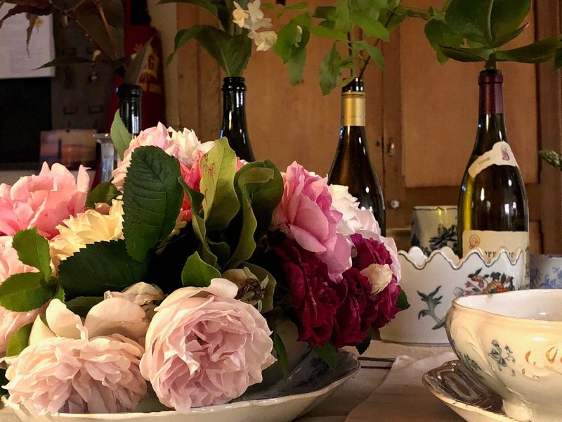 Beechworth's 600 metre cool climate is brilliant for roses