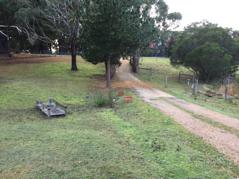 The driveway leading to one of the cottages