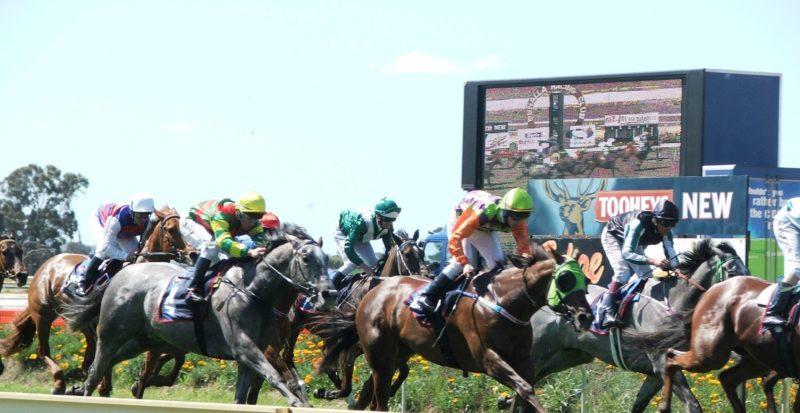Benalla Country Racing