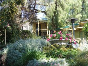 Rose Cottage overlooking the garden. The verandah is shaded by trees. There are steps leading up.