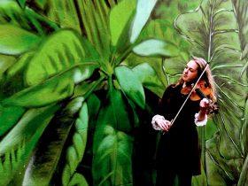 Bendigo International Festival of Exploratory Music