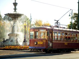 Vintage Talking Tram passing Alexandra Fountain