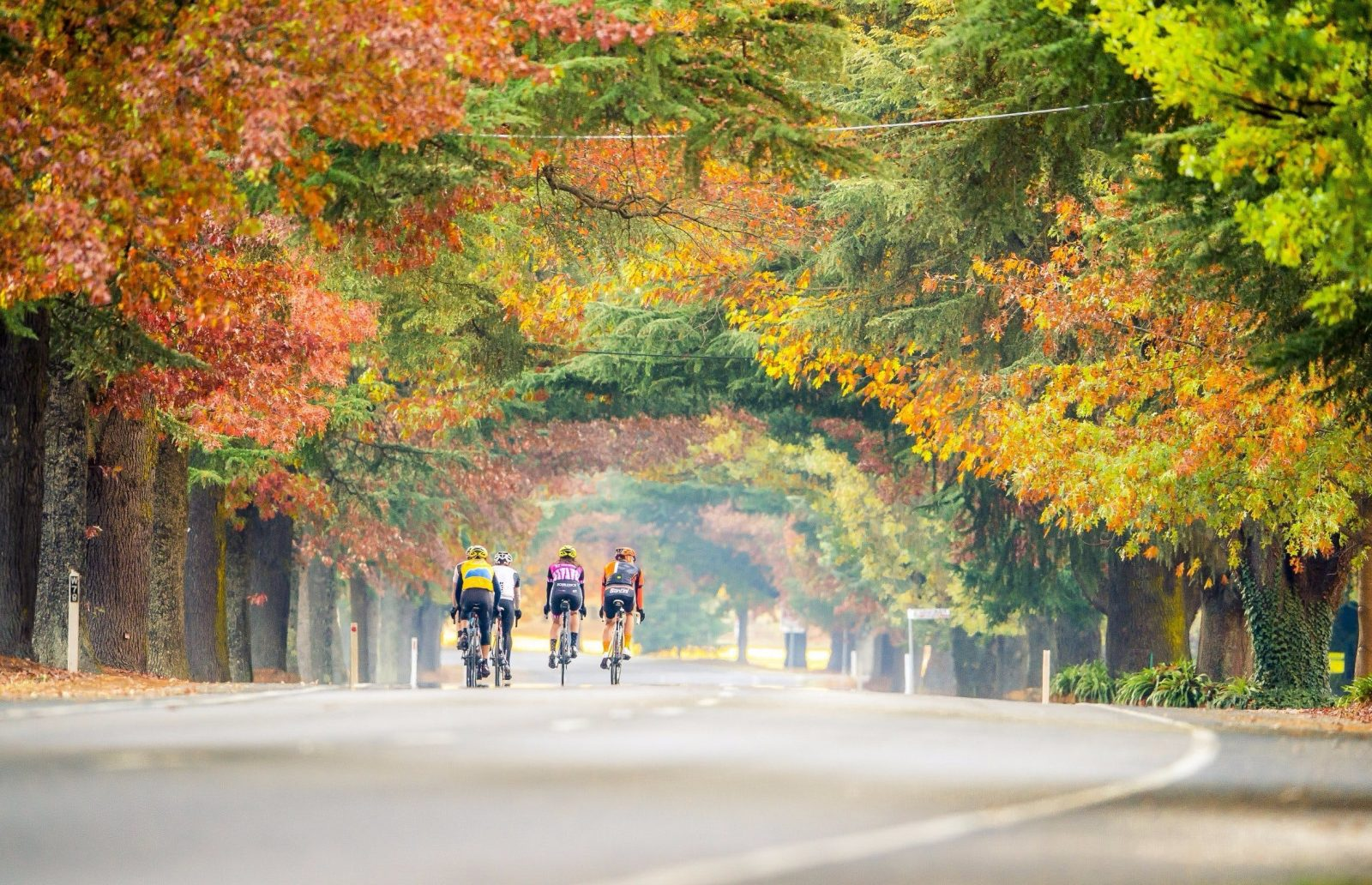 Road riding in Autumn