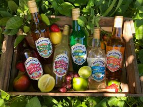 Billson's Traditional Cordials