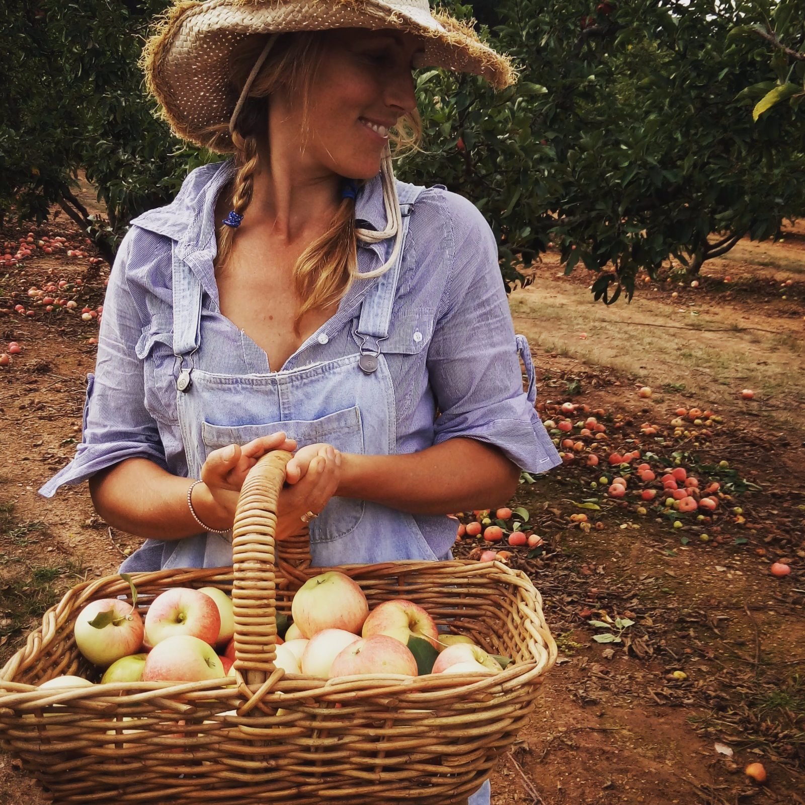 Black Barn Farm - Pick Your Own Apples