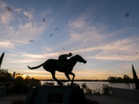 Black Caviar statue on dusk