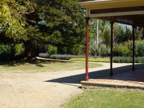 Bon Accord gardens