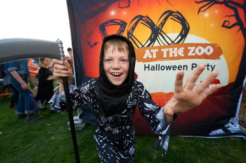 Boo Zoo