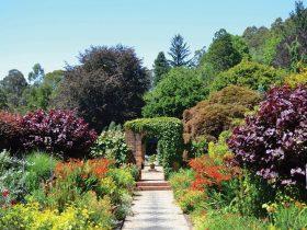 Cloudehill Garden