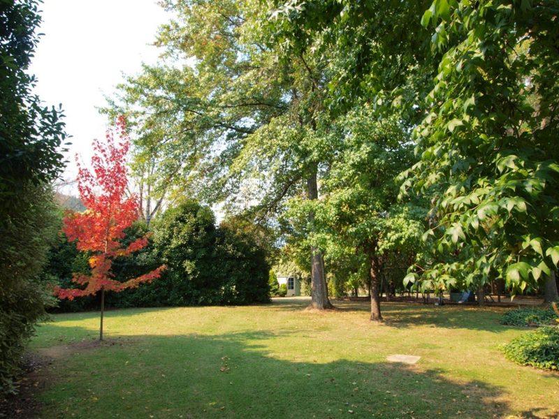 Park-like grounds
